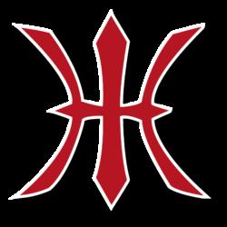 Heidelberg-Hedgehogs-Logo